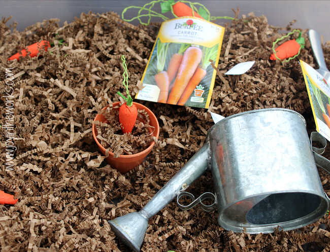 Spring is a great time to read The Carrot Seed and do some gardening dramatic play with this carrot sensory bin.