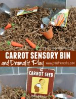 Carrot Sensory Bin and Dramatic Play